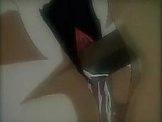 Hentai Niches Set
